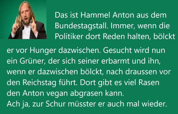 Hamel Anton